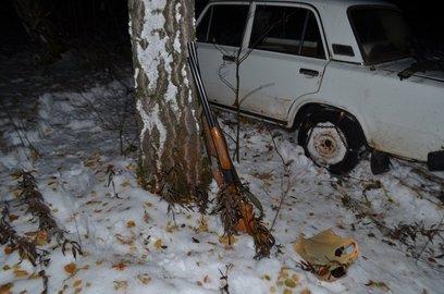 ВПрикамье полицейские задержали браконьеров, убивших лося