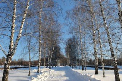 Наследующей неделе вБашкирии потеплеет до