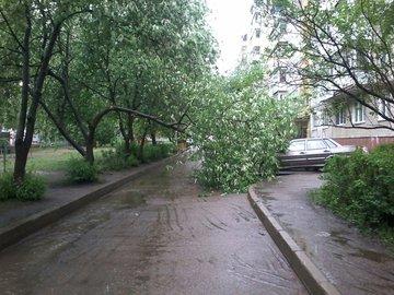 В Уфе ливень размыл дороги и свалил деревья