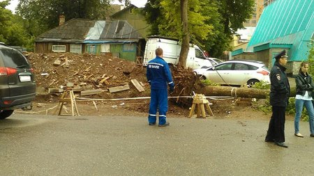 ВУфе засутки зафиксировано 40 случаев падения деревьев и ветвей