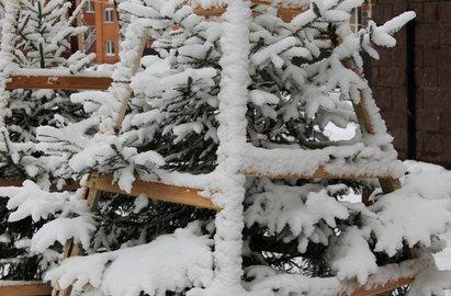 Погода вБашкирии на3октября: ночные заморозки