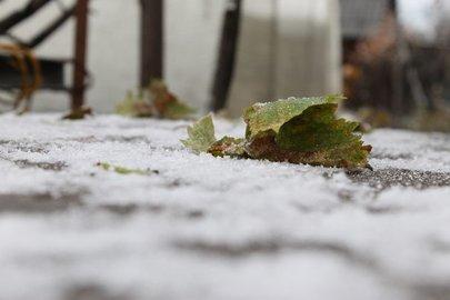 Вконце недели вБашкирии ожидаются метели