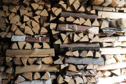 ВУфе пропала целая лесопосадка— Пеньки вместо тополей